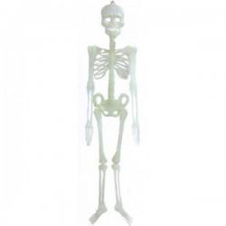 Скелет  90 см (светиться в темноте)